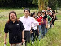 Honda & UNDP associates walking across the fields
