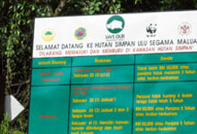 One of the signboard placed at the entrance of Danum Valley to stop illegal poachers and hunters
